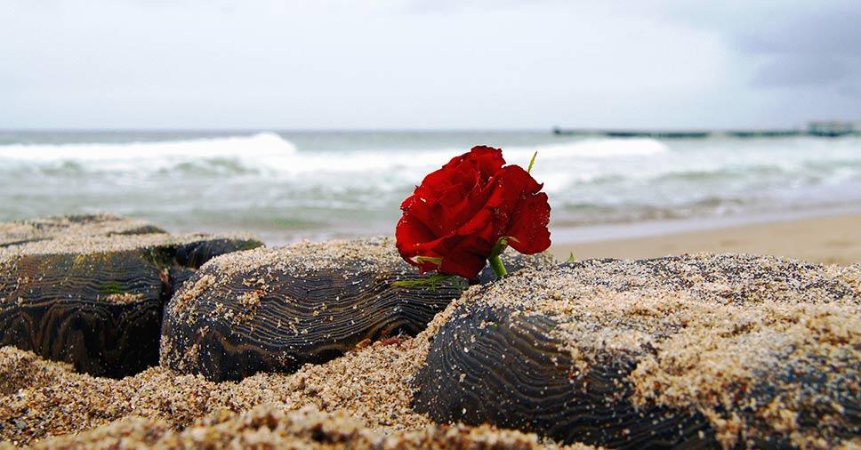 Veja 5 vantagens de investir em plano funerário