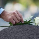 Vemos uma flor. Veja quais são os serviços fúnebres oferecidos pela Santa Casa Card!